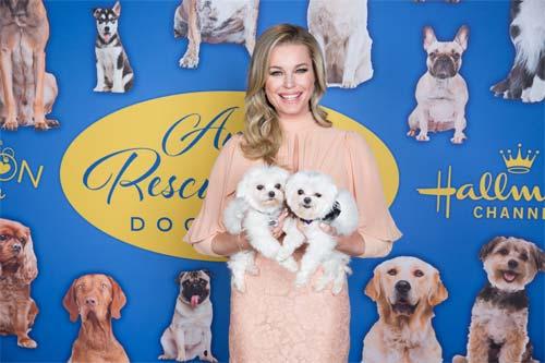 Dog Show Judges Reviews